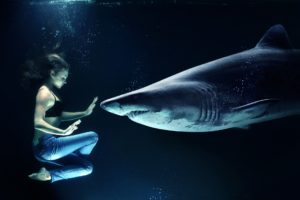 woman and shark